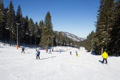 Skifahrer und Snowboarder, die guten Schnee genießen Lizenzfreie Stockbilder
