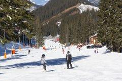 Skifahrer und Snowboarder, die guten Schnee genießen Lizenzfreies Stockfoto