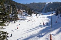 Skifahrer und Snowboarder, die guten Schnee genießen Lizenzfreie Stockfotografie