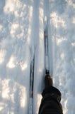 Skifahrerquerfeldeinskifahren Lizenzfreies Stockfoto