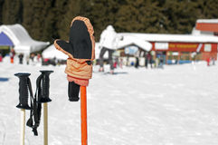 Skihandschuhe und -steuerknüppel stockbild