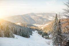 Skihelling op de Karpatische bergen Royalty-vrije Stock Fotografie