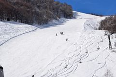 Skihellingen en skiërs Stock Foto