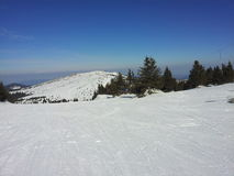 Skihellingen in Kopaonik Stock Foto