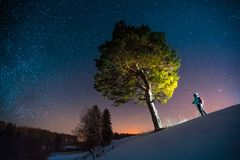 Skiier stands in the forest. Near the big pine tree during starry night stock image