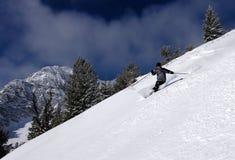 Skiing. Skier in fresh Utah powder Stock Image