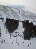 Skiing Royalty Free Stock Photography