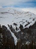 Skiing Stock Photos