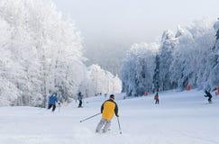 Skiing. Mountain ski rider in yellow jacket on ski slope Royalty Free Stock Photos