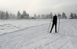 Skiing 5 Royalty Free Stock Photography