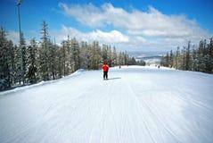 Skiing. Mounting- skiing slope, beautifull landscape Royalty Free Stock Image