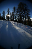 Skiing action 4. Wintery skiing goodness. Slope with adjacent trees and slanting sun, casting large shadows Royalty Free Stock Photo