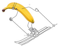 Skiing banana Stock Images