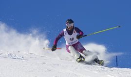 Free Skiing Championship On Jahorina Stock Photography - 13599112