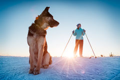 Skiing with the dog Royalty Free Stock Image