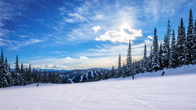 Skiing down smooth slopes under blue sky in the high alpine ski area at Sun Peaks Stock Photo