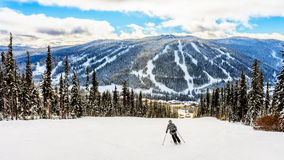 Free Skiing Down To The Village Of Sun Peaks Royalty Free Stock Photography - 64900757