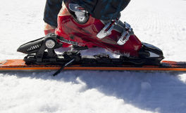 Skiing equipment on snow Royalty Free Stock Photography
