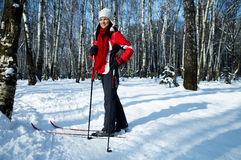 Skiing in the forest Stock Photography