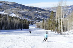 Skiing Packed Pow at Beaver Creek, Vail Resorts, Avon, Colorado. Blue Bird Ski Day. Elevation 12,000 feet. Dream Vacation, Eagle County, Birch Trees and stock image