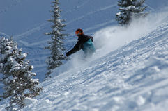 Skiing in the powder. At ski resort royalty free stock image