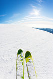 Skiing on a ski slope. Closeup perspective, fish-eye lens, vertical orientation Royalty Free Stock Photography