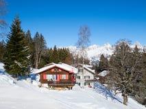 Skiing slope Royalty Free Stock Photos