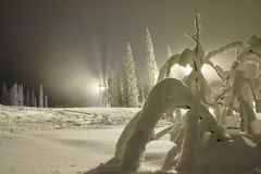Skiing slope at night Stock Photography
