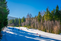 Skiing on the slopes of Szrenica Stock Photos