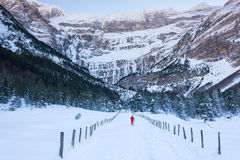 Skiing on a snowy trail Stock Photos