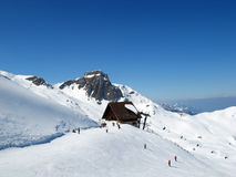 Skiing in swiss alps Royalty Free Stock Images