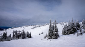Skiing on the Top Sun Peaks Ski Resort Royalty Free Stock Images
