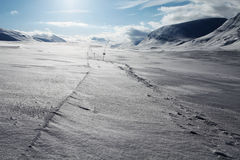 Skiing track on the Kungsleden Royalty Free Stock Photos