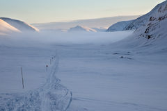 Skiing track on the Kungsleden Stock Photography