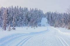 Skiing trail in beautiful winter landscape Stock Photography