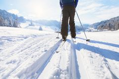 Skiing in winter. Background with legs of skier on ski track Stock Photography