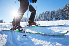 Skiing in winter Royalty Free Stock Photo