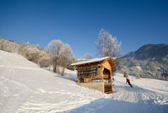 Skiing in a winter landscape with wooden barn, Pitztal Alps - Tyrol Austria Royalty Free Stock Photo