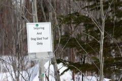 Skijoring y el trineo del perro se arrastran solamente Imagen de archivo libre de regalías