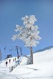Skilift in de bolu (Turkije) bergen Royalty-vrije Stock Foto