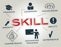 Skill concept. Chart with Keywords and icons Stock Photography