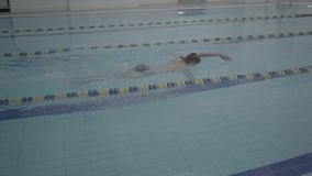 Skill male swimmer in indoor pool swimming across track. Healthy lifestyle. Sports and recreation. Athletic professional swimmer hardly working out in indoor stock footage