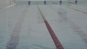 Skill young swimmer in indoor pool swimming across track. Healthy lifestyle. Sports and recreation. Athletic professional swimmer hardly working out in indoor stock video
