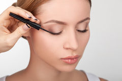Skilled young beautician is doing make-up for girl stock photography