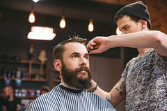 Skillful barber cutting hair of young man with beard. Handsome skillful barber cutting hair of young attractive men with beard at barbershop Stock Images
