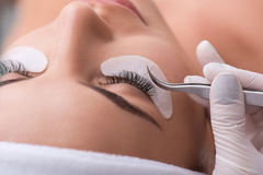 Skillful cosmetician making artificial eyelashes Royalty Free Stock Photo