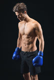 Skillful male fighter ready to box Royalty Free Stock Photography