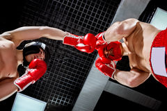 Skillful two athletes are sparing with each other Stock Photos