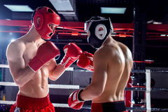 Skillful two opponents are sparing with each other Royalty Free Stock Images