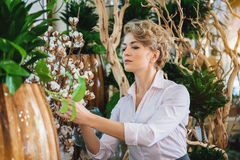Skillful woman taking care of goods in flower shop. Professional female florist is caring of plant in store with concentration Stock Images